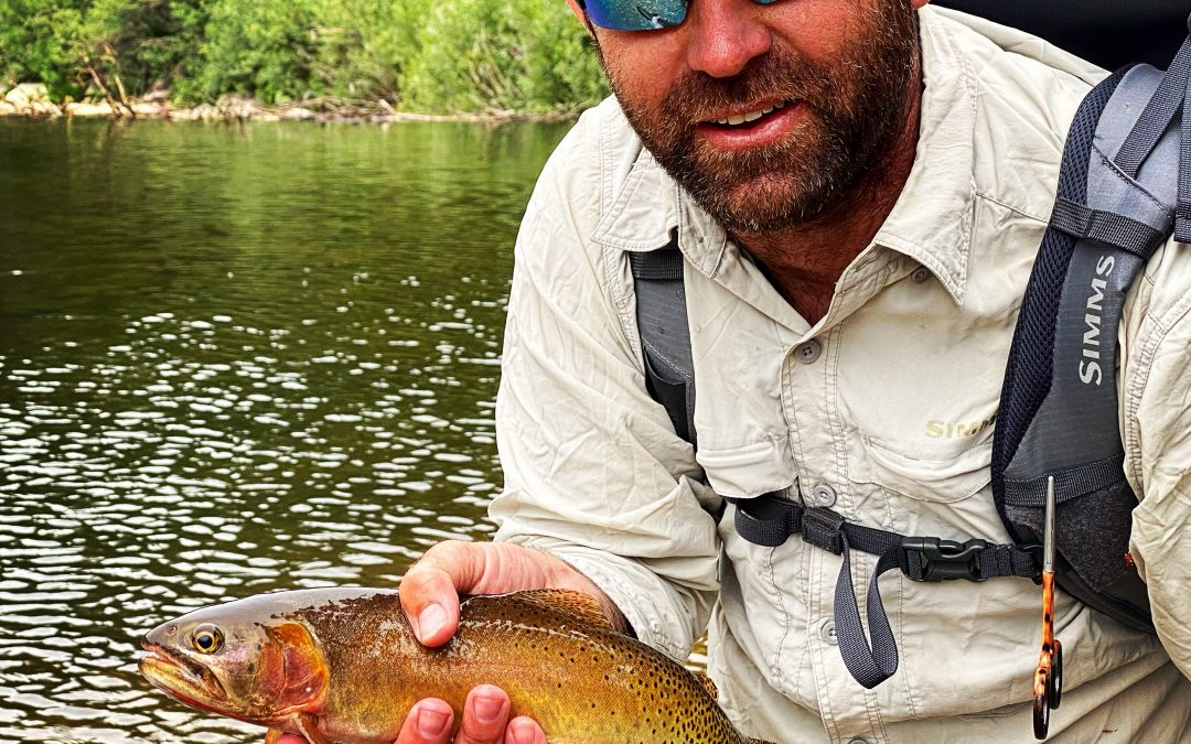 Western Native Trout Challenge Expert Level