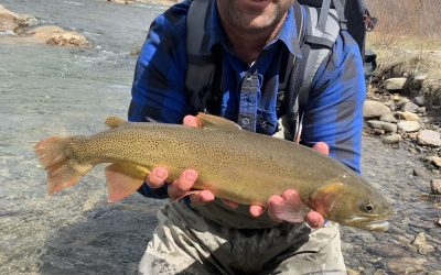 Uncompahgre River, Colorado